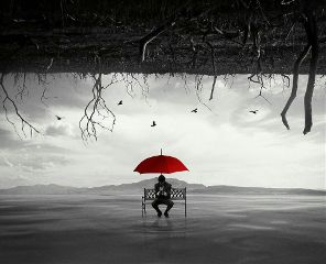 chair umbrella jungle tree