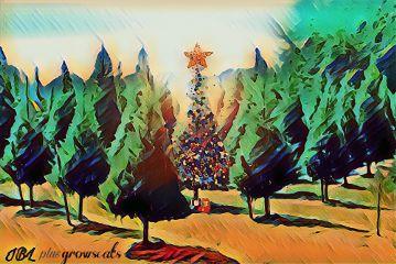 freetoedit christmas celebrate if