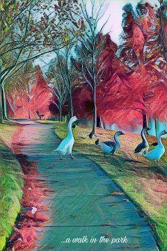 freetoedit mickeybobbieremix geese anotherdayinthepark