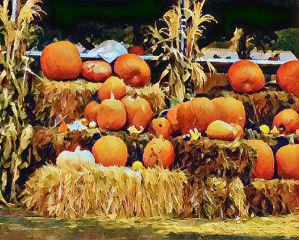 freetoedit myphotography halloween2017 pumpkins travel