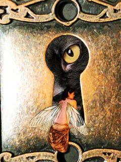 keyhole blackcat cateyes cat fairy