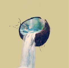 freetoedit edit waterfall fun coconut