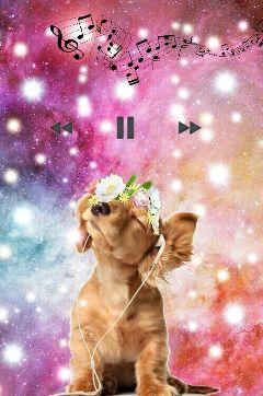 freetoedit music dog snapchat