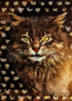 freetoedit cat royal catsofpicsart firstversionofthiscat
