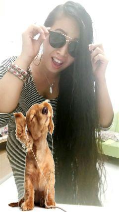 freetoedit pa brebesbrhias hongkong puppystickerremix