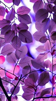 freetoedit purple leaves wallpapers