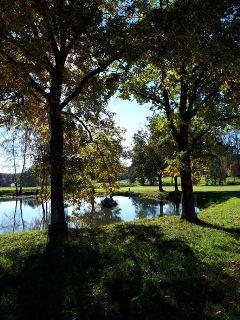 freetoedit lake autumn