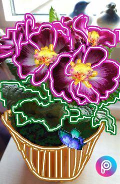 neonplants freetoedit neonflowers