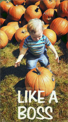 likeabossstickerremix likeaboss grandson family love freetoedit