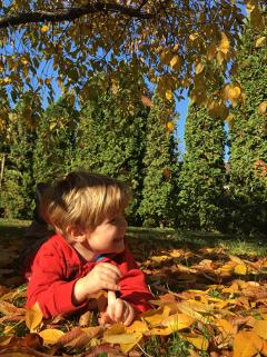freetoedit autumn children sunny
