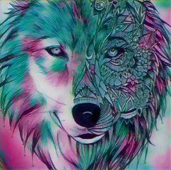 image wolf freetoedit colorful eyes