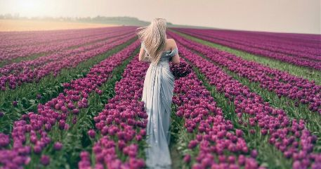 romance romantic flowers girl sunset