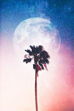 universe stars stickers moon luna freetoedit
