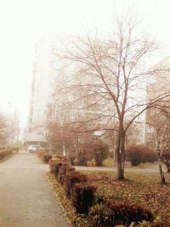 photography autumn urban