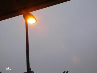 myphoto light goodmorning freetoedit