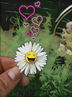magiceffectnoepop daisy stickers emotions neon