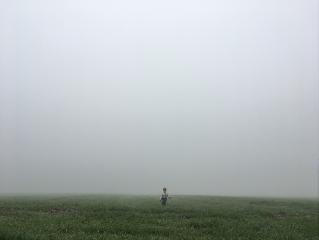 freetoedit fog children nature
