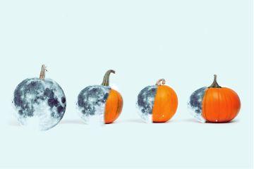 pumpkinremix freetoedit moons pumkins moonfaces