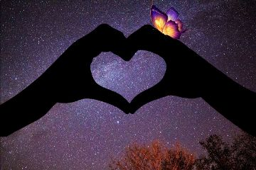 meteorshower freetoedit heart butterfly stars
