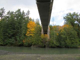 bridge river nature freetoedit