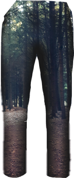 pants pant forest forestpant pantalone freetoedit