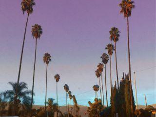 freetoedit cali california palm palmtree
