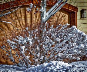 angeleyesimages landscape landscapephotography nature snow
