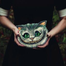 readyforhalloween cheshire aliceinwonderland smile cat freetoedit
