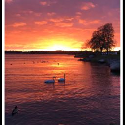 photography sky sunsetsky nature