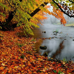 river naturepatterns november happynovember november2017 freetoedit