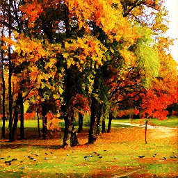 freetoedit nature remix fall colorfulleaves