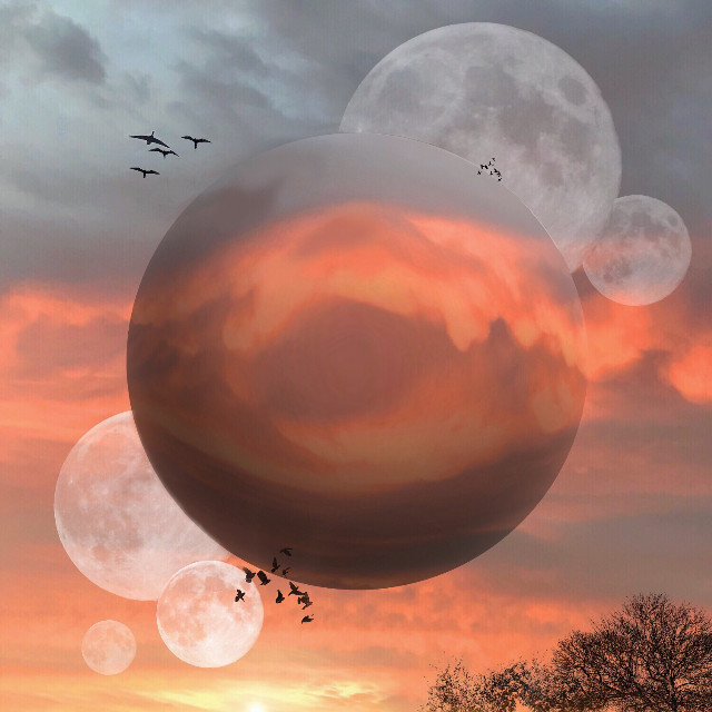 """#freetoedit I love moon stickers! Set them on """"soft light"""" and they look so fab! #moon #remixed #interesting #art #orb #myedit #madewithpicsart #birds #sky #nature #sunset #abstract"""