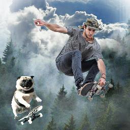 freetoedit mansbestfriend fun collage skateboarding