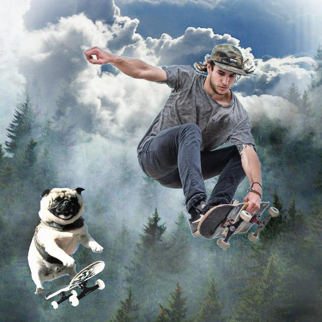 #mansbestfriend#fun#collage#skateboarding#dogs#fog#perspective