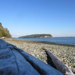 driftwood island rockybeach freetoedit