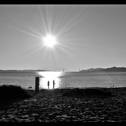 californiadreamin goldengatebridge myphotography monochrome silhouette freetoedit