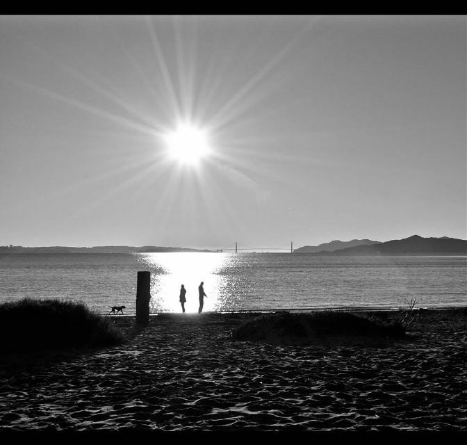#californiadreamin#goldengatebridge#myphotography#monochrome#silhouette