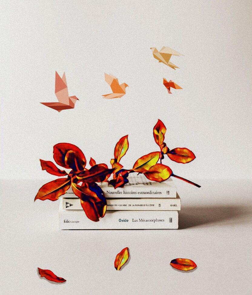 #books#flower#birds#color#hdr