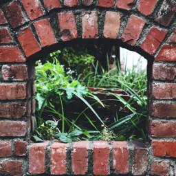 freetoedit bricks brickwall garden photography