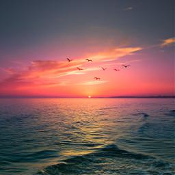 freetoedit remixit travel nature sunset sea myedit