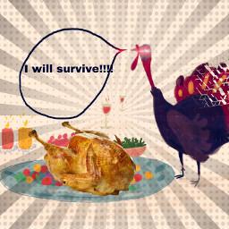 turkeythoughts freetoedit