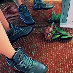 sneakersaddict sneakerheads adidas popart sneaker