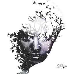 doubleexposure darkart artisticportrait surreal branches