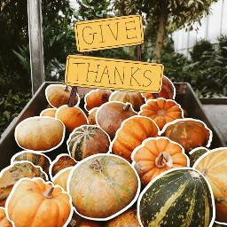 freetoedit thanksgivingdecor