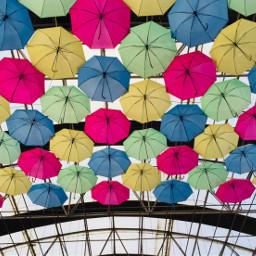umbrella colorfull colorsplash lovecolors