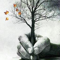 freetoedit autumncollage