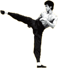 brucelee bruce_lee people karate freetoedit