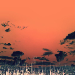 freetoedit bigsky marshgrass myoriginalphoto