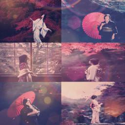 red flare umbrellas trees nature
