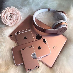 ipad iphone tumblr beauty rosa